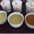 評茶3回目…白茶の茶水